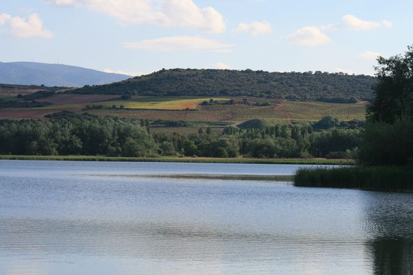 El parque de La Grajera: un espacio verde de ocio en Logroño